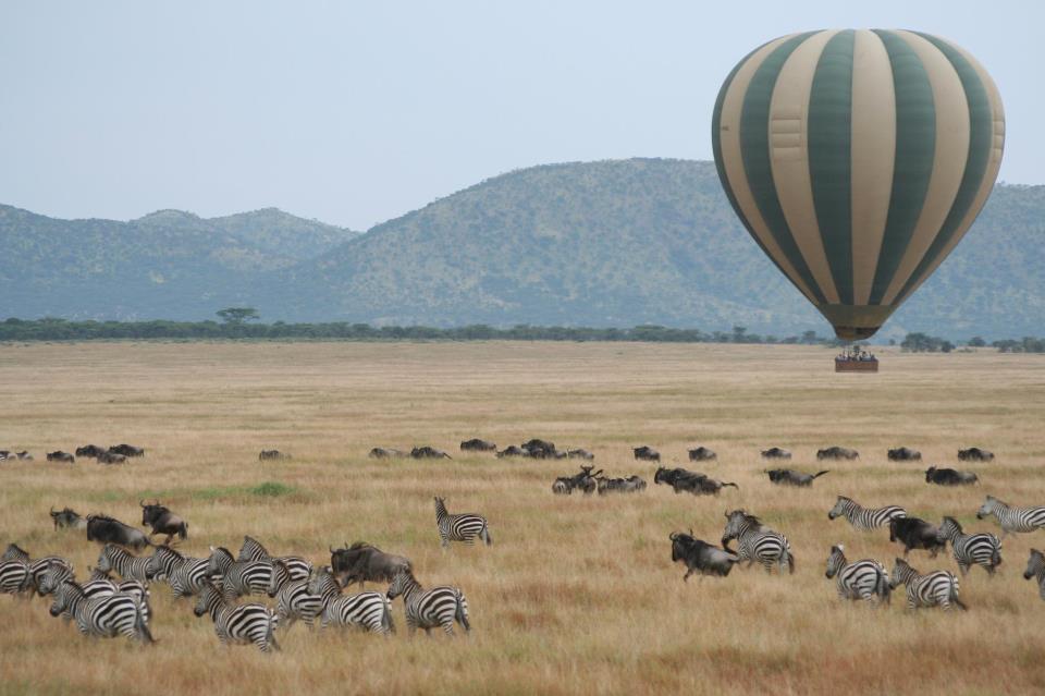 Africa Balloon over zebra